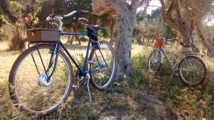 E-bike mod. Cobalto